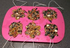 Zelf een vogel restaurant maken, leuk idee voor in de herfstvakantie!!!