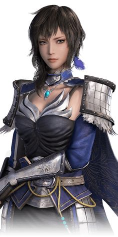 Dynasty Warriors 9 wang yi