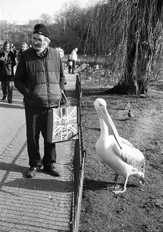 Photo © Richard Alton / man and pelican in St.