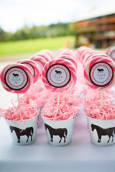 Pink and Brown Pony Themed Birthday Party via Kara's Party Ideas . Country Birthday Party, Horse Birthday Parties, Cowgirl Birthday, Cowgirl Party, Farm Party, Birthday Party Themes, Birthday Ideas, Pony Party, Barbie Birthday