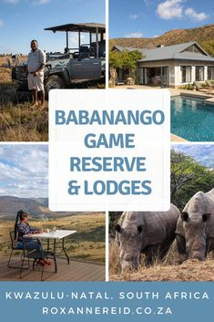 Visiting KwaZulu-Natal and looking for somewhere different? Find out why to visit Babanango Game Reserve in KZN. All about conservation and community, it also has gorgeous lodges like Babanango Zulu Rock and Babanango Valley Lodge. – perfect game lodges KZN. There are lots of things to do, from game drives, nature walks and helicopter flips to horse riding, stargazing and a battlefield tour. Game reserve accommodation KZN. Game Lodge, Wildlife Safari, Kwazulu Natal, Slow Travel, Perfect Game, Kruger National Park, Game Reserve, Walking In Nature, Africa Travel