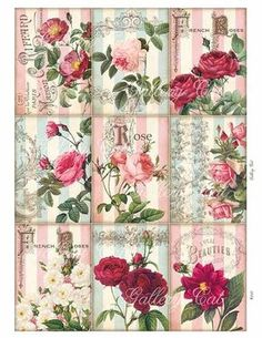 "25 x 110 cm € 14,00//m patchwork tissu-Noël /""Not Even a Mouse/"""