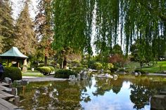 Local history, open spaces, and family fun: the best things to see and do in San Jose's Kelley Park.