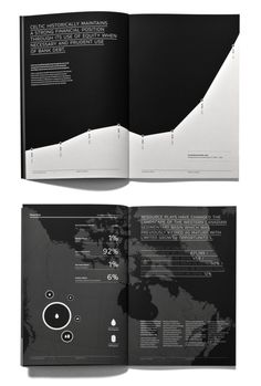Celtic Explorations Annual Report by Jake Lim