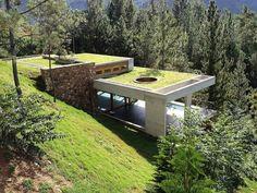 toit-végétal-architecture-verte-bioclimatique