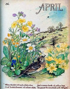 """pagewoman:  """" April by Edith Holden  """""""