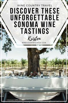 Planning a trip to wine country? Check out these two wineries for fun, immersive, and photo-worthy wine tasting experiences Winery Tasting Room, Wine Tasting Party, California Wine, California Travel, Best Rose Wine, Wine Tasting Experience, Sonoma Wineries, Wine Tourism, Wine Country