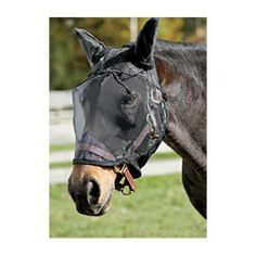 UltraShield® EX Fly Mask with Ears | Dover Saddlery