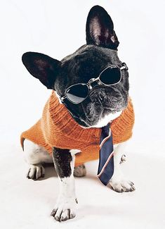 GQ!! We have frames to match your style and personality. Stop in and check out our selection. http://www.drrosenak.com/