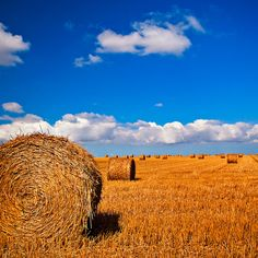 Normandy without hay circles is like a bird without songs by Allard One, via Flickr