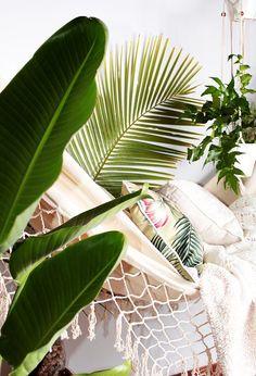 dream gardens: Tropický balkón