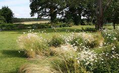 Hampshire Garden   Flowing borders in country garden   Charlotte Rowe Garden Design
