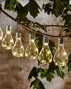 Smart Garden Solar light bulb 6 pack