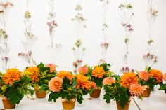 flower wall coral decoration orange terra cotta love green plants floral wedding reception decor | Jen + Kat | Los Angeles Stylish Same Sex Wedding | Jenn Emerling Weddings