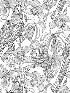 Coloring Page For Grown Ups Adult Book Pages