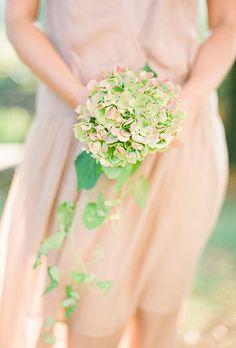 A simple hydrangea and greenery posy.