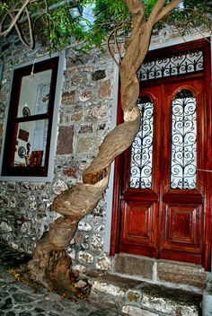 Twisted stem/trunk of a grape bush in the narrow and steep streets of Mithymna/Molivos. Door Knobs, Door Handles, Somewhere With You, Greece Pictures, Beautiful Buildings, Double Doors, Beautiful Islands, Greek Islands, Doorway