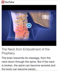 The Neck from Embodiment of the Prophecy http://www.andrewtheprophet.com/11301/260404.html