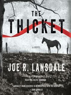 The Thicket - Joe R Lansdale