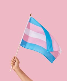 You don't have to be transgender inorder to show you're support.#Transrights#Staywinning