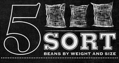 Starbucks Bean to Beverage Typographic Mural by Jaymie McAmmond, via Behance