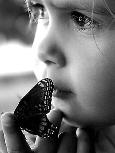 Happiness is a butterfly, which when pursued, is always just beyond your grasp, but which, if you will sit down quietly, the butterfly will land on you! - Nathaniel Hawthorne