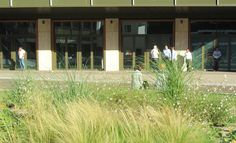 Loos van Vliet - Office garden First, Rotterdam Rotterdam, Garage Doors, Gardens, Van, Outdoor Decor, Plants, Home Decor, Decoration Home, Room Decor