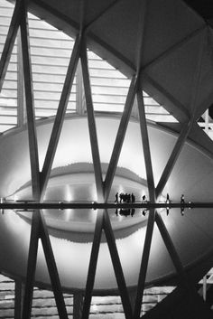 Museo de las Ciencias Príncipe Felipe, Valencia. @designerwallace