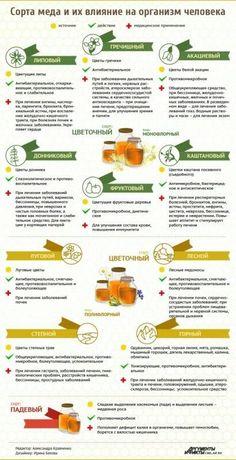 Влияние меда на организм #RawGarlicBenefitsNaturalAntibiotics Good Health Tips, Health And Fitness Tips, Health And Wellness, Natural Cough Remedies, Herbal Remedies, Lemon Benefits, Health Benefits, Healthy Food Choices, Healthy Tips