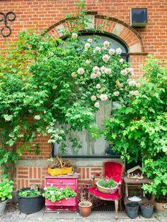 City-guide de Copenhague: toutes mes bonnes adresses Vintage Buffet, Odense, Guide, Patio, Outdoor Decor, Plants, Viajes, Cinque Terre Italy, Copenhagen