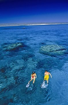 Great Barrier Reef, Australia: