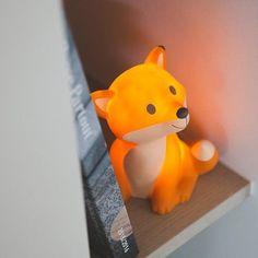Fuchs-Leuchte
