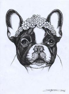 frenchie , french bulldog , cutie , cute , beauty, jeroen teunen , teunen , the dog painter