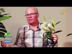 Curso de arte floral - aula 3 - YouTube