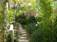 Narrow Space Garden Design Ideas: Plant a vine over an arch More designs by Shirley Bovshow at EdenMakers.com