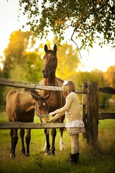 Sweet horses animals girl outdoors nature trees country horses ranch