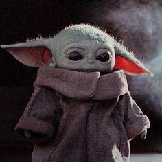 I just woke up from my nap. I can't find my dad. I re… I just woke up from my nap. I can't find my dad. Star Wars Meme, Star Wars Art, Anakin Dark Vador, Find My Dad, Baby Animals, Cute Animals, Yoda Meme, Star Wars Pictures, Yoda Pictures
