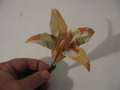 video tutorial for origami iris / lily.  Verbal instructions throughout.  Thorough, and thus long.  Over 14 minutes!  Includes stalk instructions.