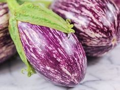 """Listada de Gandia is one of the most popular heirloom eggplants; this one has 7""""-long fruit that are white with lovely bright purple stripes."""