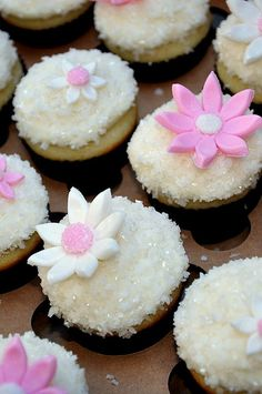 Special occasion cupcakes (wedding, baby shower, bridal shower, birthday, etc).