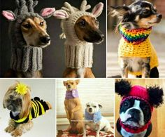 Dog Crochet Free Patterns