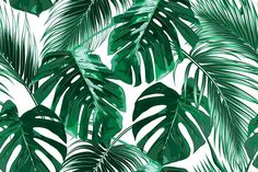 Tropical leaves vector pattern - Patterns
