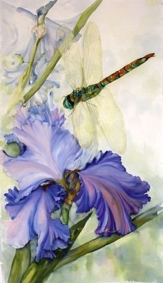 Iris and dragonfly, painting on silk by Karen Sistek Dragonfly Painting, Dragonfly Art, Botanical Art, Botanical Illustration, Fabric Painting, Painting & Drawing, Watercolor Flowers, Watercolor Paintings, Watercolors