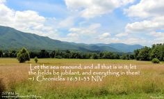 Let the sea resound, and all that is in it; let the fields be jubilant, and everything in them! ~1 Chronicles 16:31-33 NIV