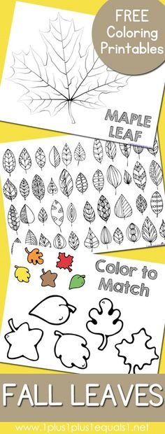 Free Fall Leaves and Trees Coloring Pages