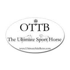 some of my favorite horses have been OTTBs.