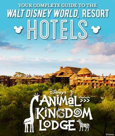 Complete Guide to the Walt Disney World Resort hotels: Disney's Animal Kingdom Lodge