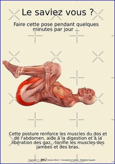 « Planches Musculo-squelettique des positions de Yoga - N°24 » par rodolphe Augusto | Redbubble Yoga Mantras, Yoga Meditation, Yoga Gym, Yoga Fitness, Posture Correction Exercises, Dieta Atkins, Burn Out, Yoga Positions, Relaxing Yoga