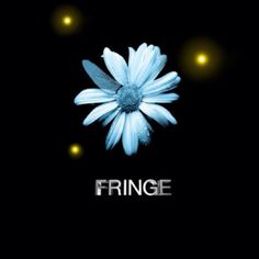The best tv show 'The Fringe'