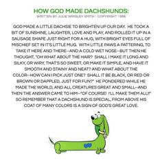 how God made dachshunds...I absolutely love this!
